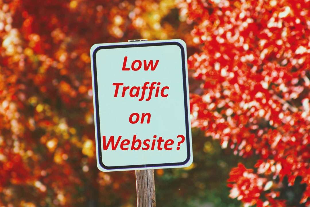 Why Your Blog Website is getting low Traffic?